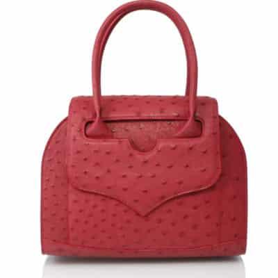 Handbag ostrich